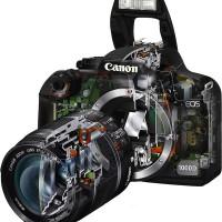 Устройство цифрового фотоаппарата.