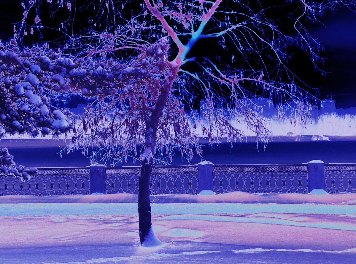 Фотография_зимы_ночь_photo_zima_noch