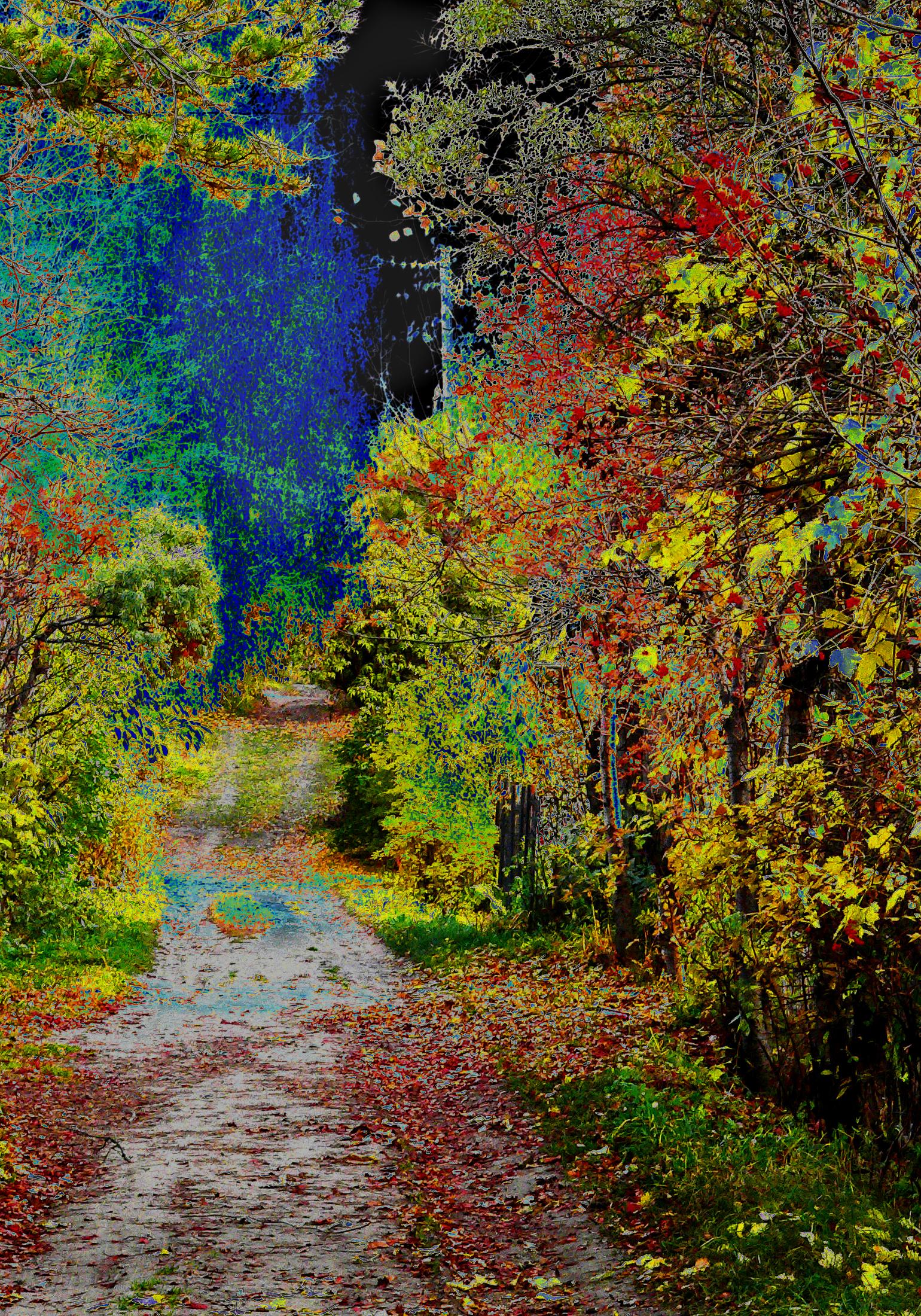 Фотография-осени-буйство-красок