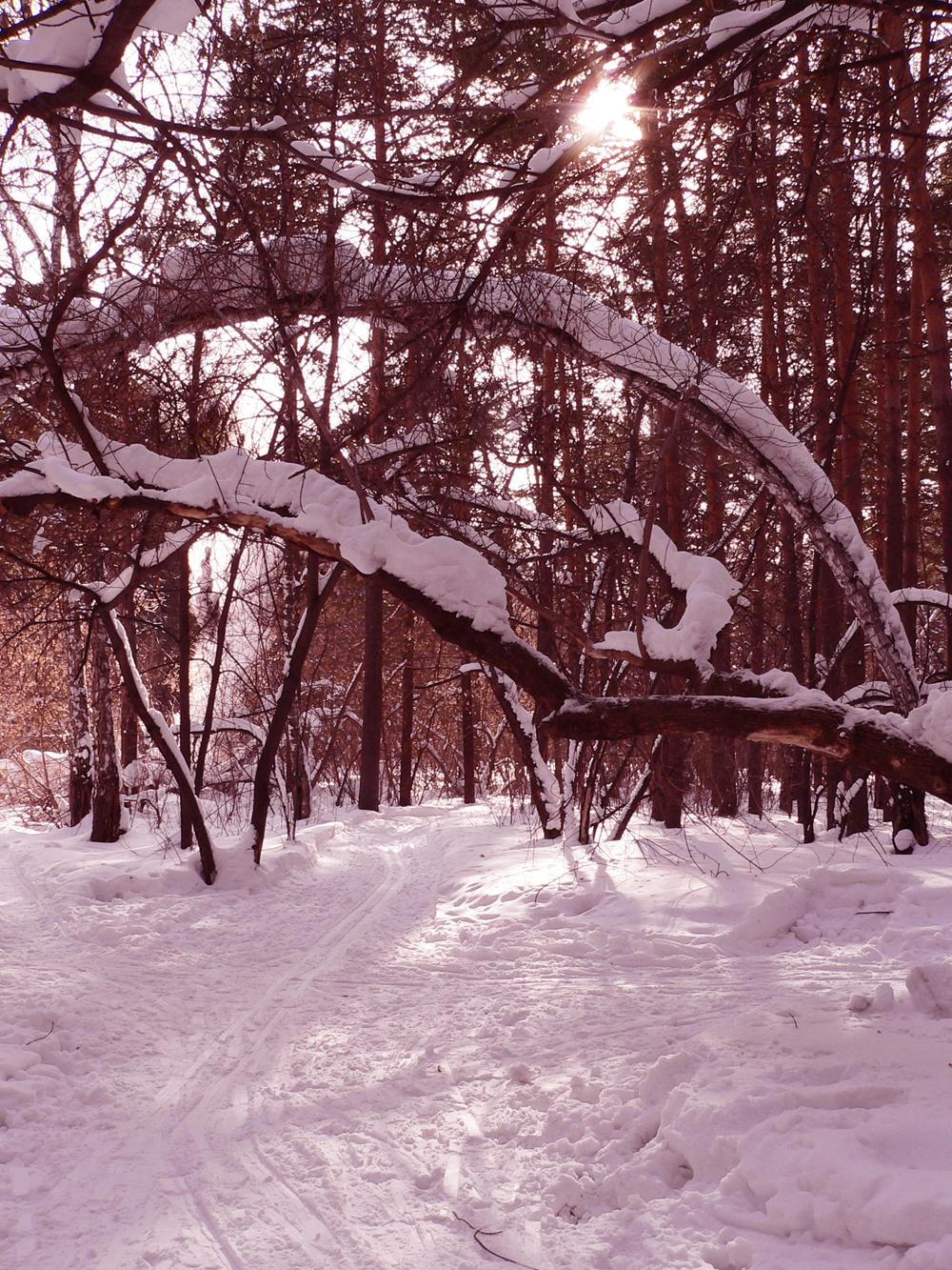 Фото-зимы-обработка-в фотошопе