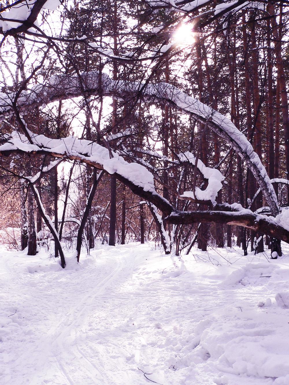 Обработка-в-фотошопе-зима
