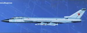 Photo-of-aeroplane-Tu128