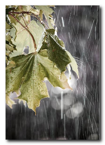 Фотография-дождя-макро