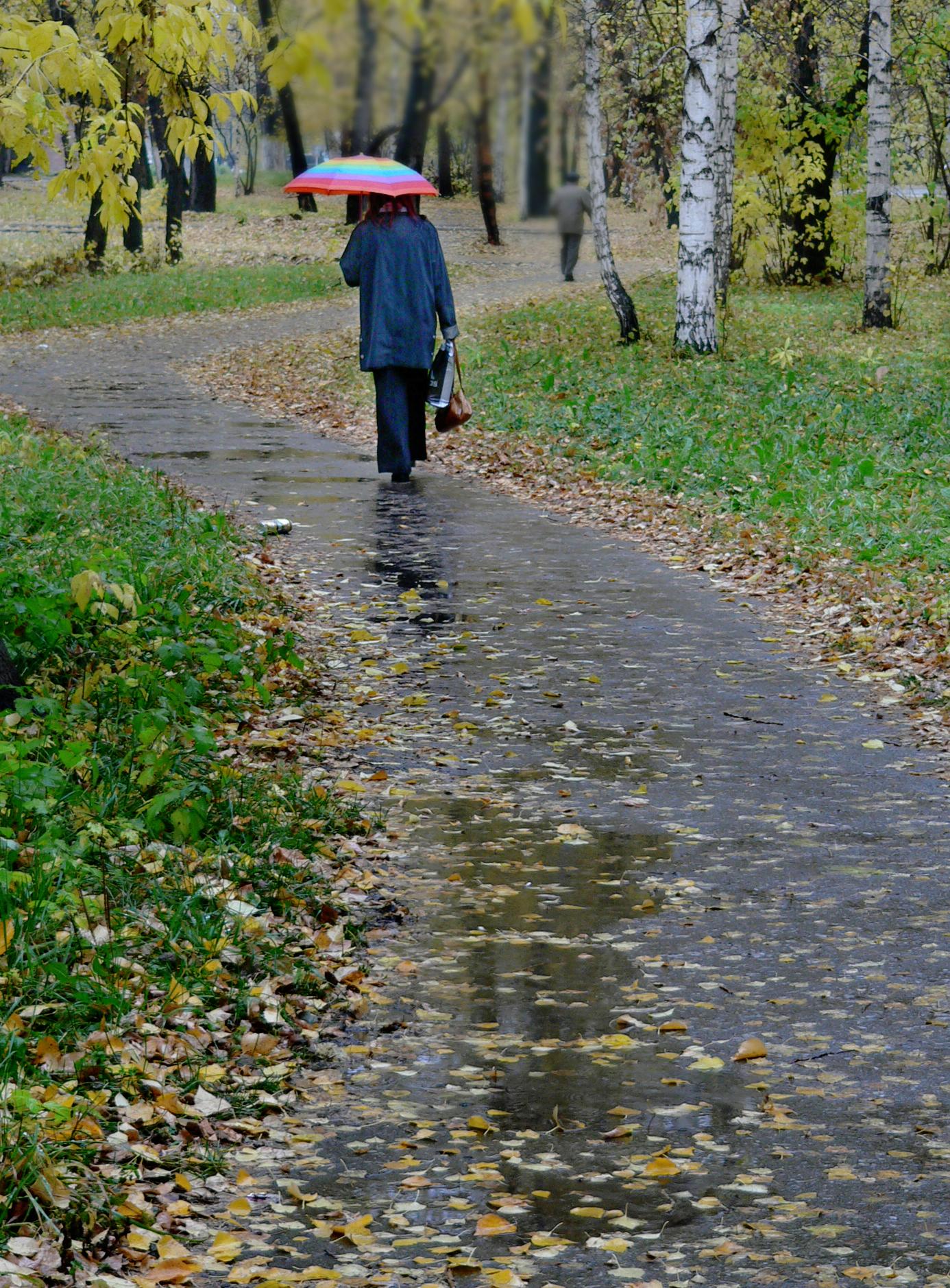 Съемка-дождя-осенний-дождь