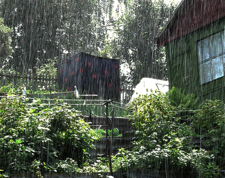 Фотография-летний-дождь