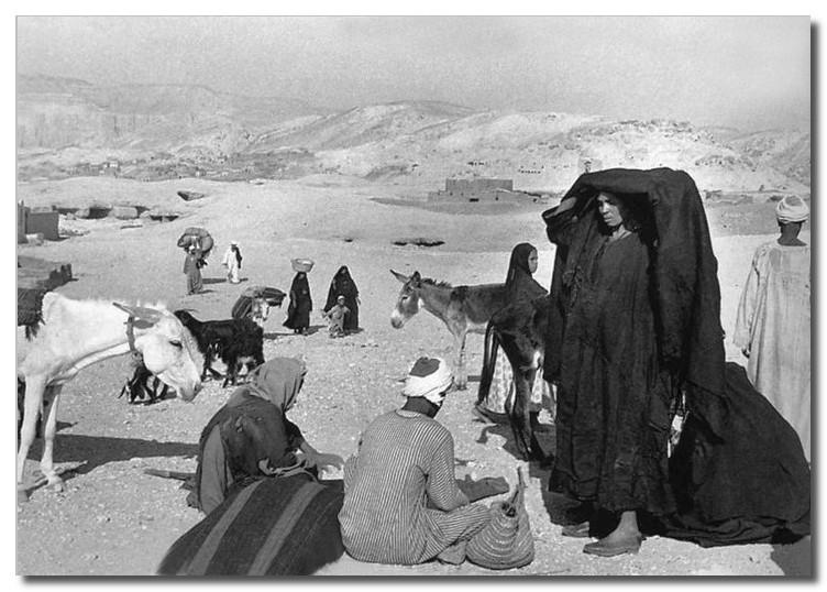 Египед, 1950 г.