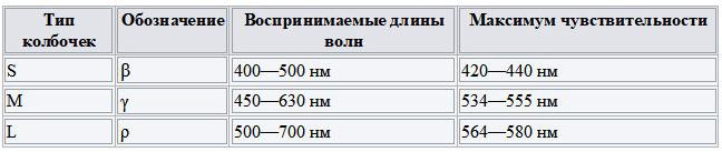 kolbochki-v-glazu